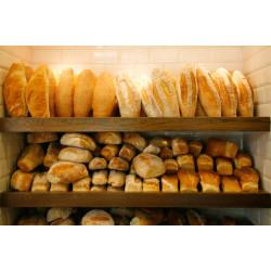 Пекарня на вывоз или мини фабрика по производству полуфабрикатов булочных изделий